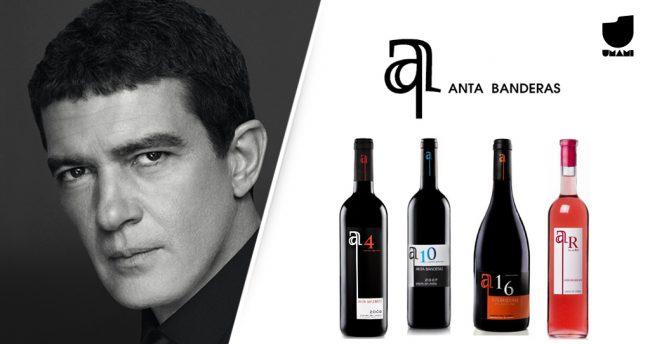 Antonio Banderas é dono da Bodegas Anta, na Espanha.
