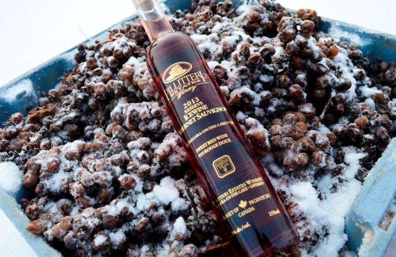 cewine elaborado com uvas tintas | Foto: Reprodução / Pillitteri Estates Winery